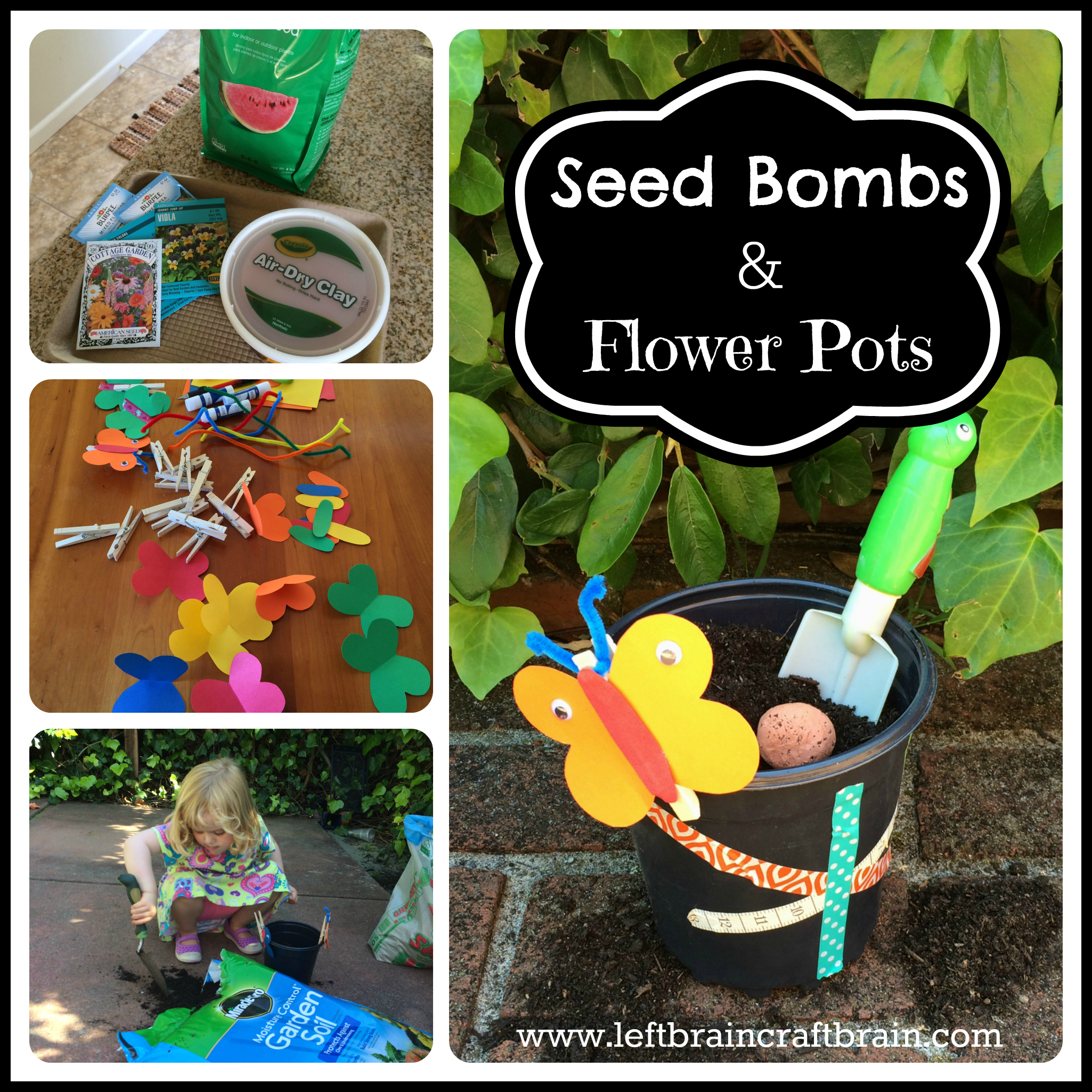 see bombs and flower pots cover
