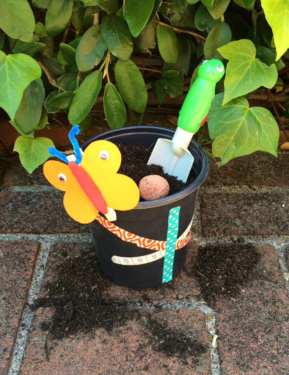 seed bomb flower pot