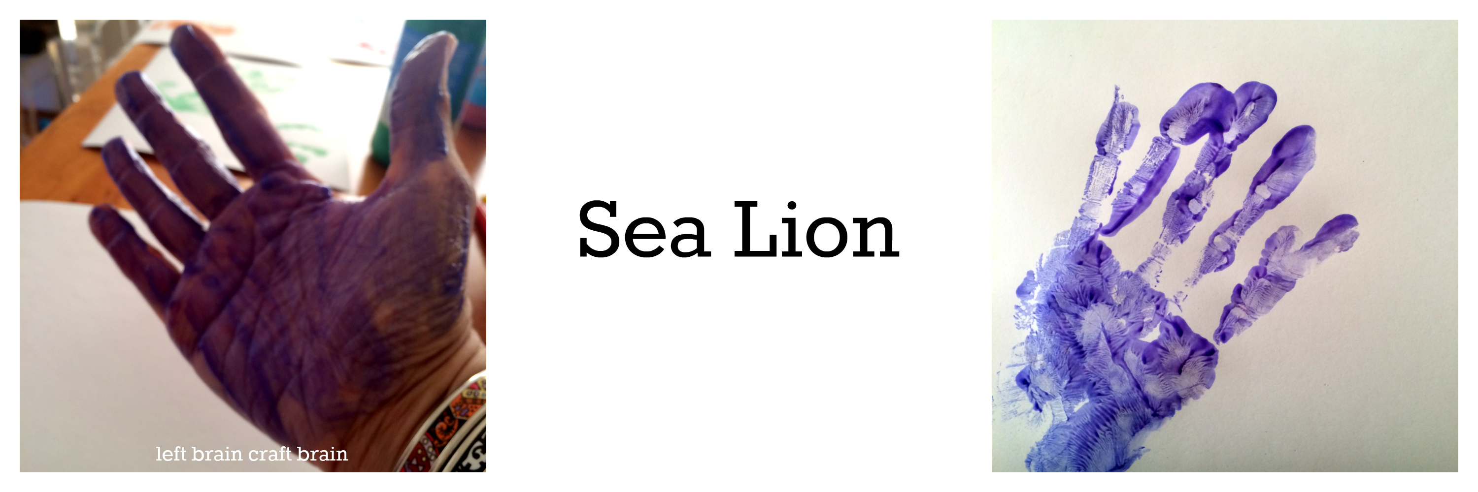 sea lion animal track hand print left brain craft brain