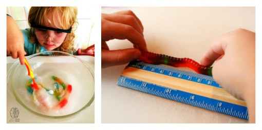 gummy worm math and science left brain craft brain