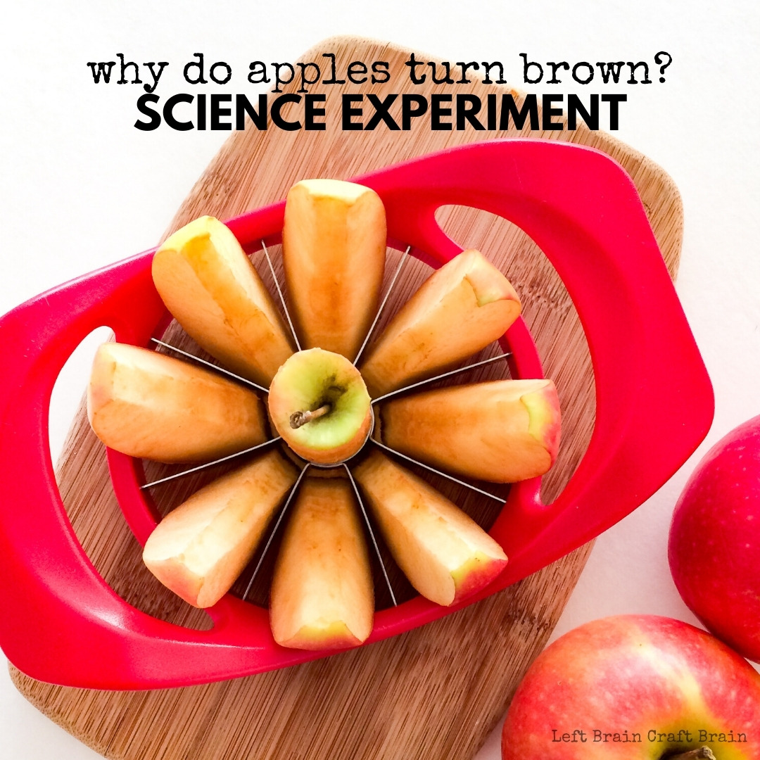 Learn why apples turn brown in this fun STEM experiment. Perfect for learning at home with supplies in your kitchen. Grab some apples and have fun!