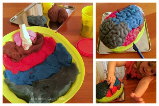 Play Dough Brain Surgery Left Brain Craft Brain