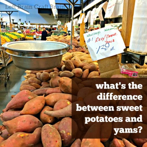 What's the Difference Between Sweet Potatoes and Yams Left Brain Craft Brain FB