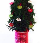 Christmas STEAM Advent Calendar: 25 Days of Learning Play