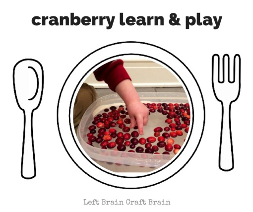 Cranberry Learn & Play Left Brain Craft Brain