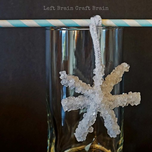 Crystal Snowflake Closeup Left Brain Craft Brain 2