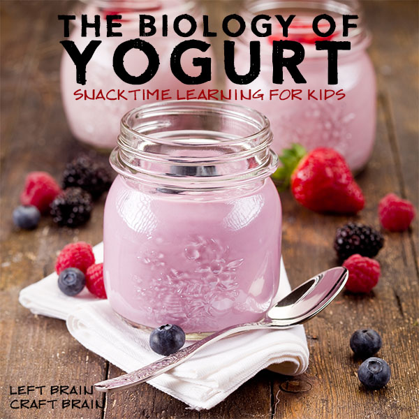 Biology of Yogurt Left Brain Craft Brain FB