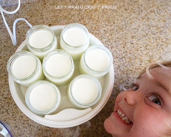 Yogurt Maker Closeup Left Brain Craft Brain3