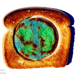Earth Toast: A Tasty Global Warming Lesson for Kids