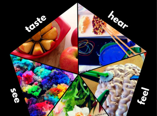 25 Sensory Play STEM Learning Activities for Kids