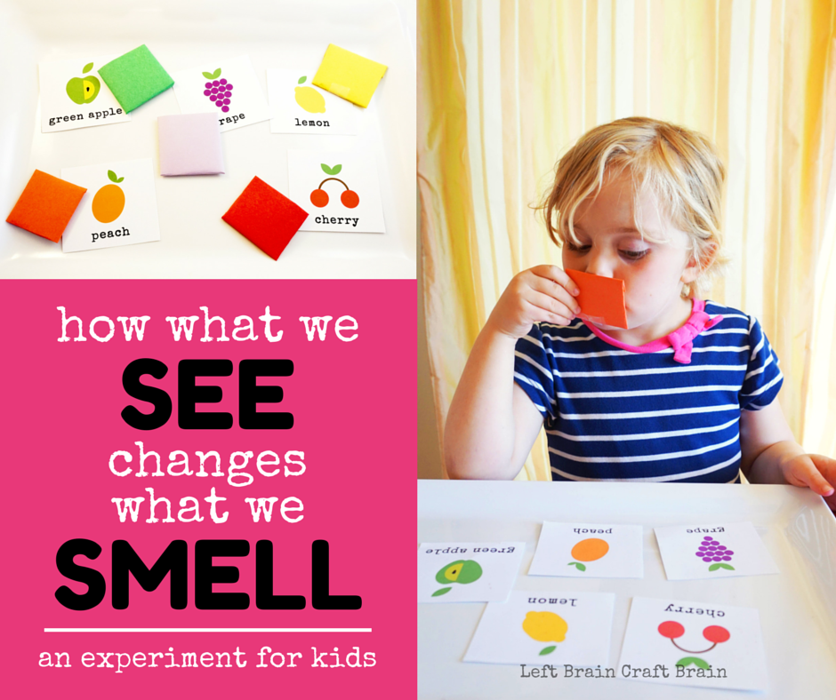 How What We See Changes What We Smell LBCB FB