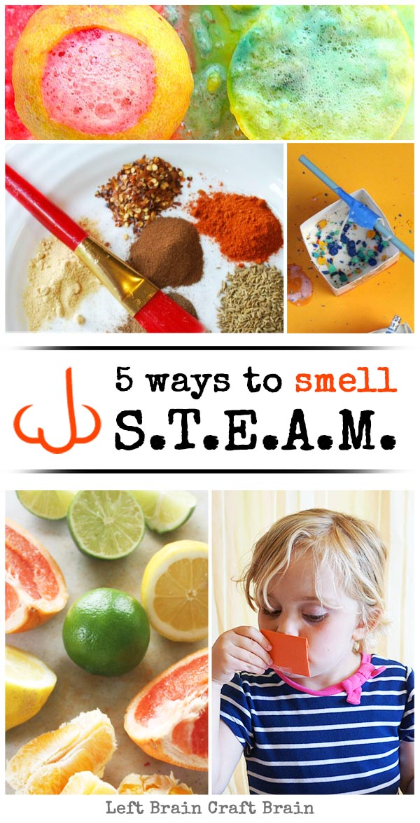 5 Ways to Smell STEAM