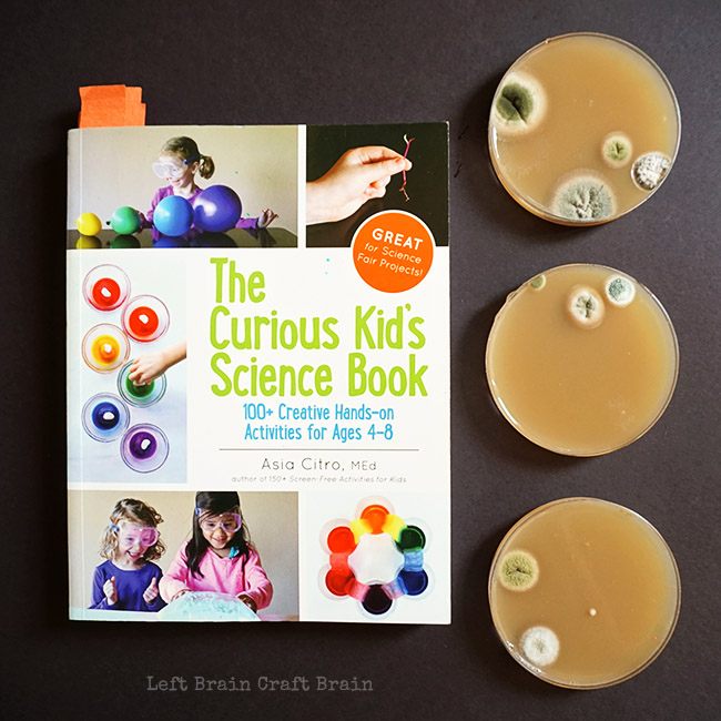 The Currious Kids Science Book