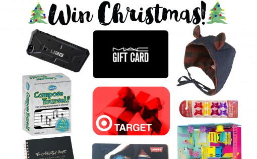Win for the Whole Family Christmas Giveaway