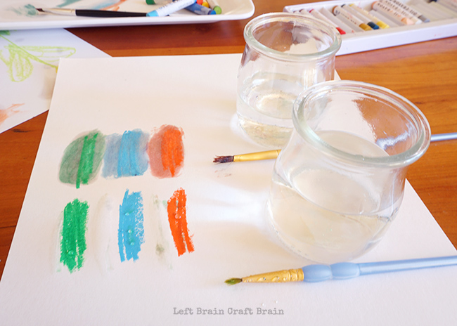 Oil and Water Solubility Test Left Brain Craft Brain