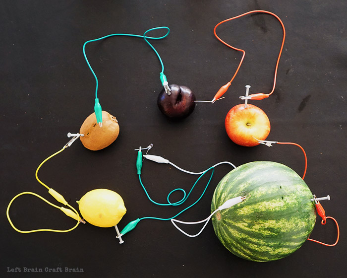 Fruit Light Circuit Left Brain Craft Brain