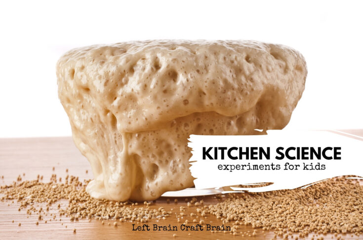 Cool Kitchen Science Experiments for Kids