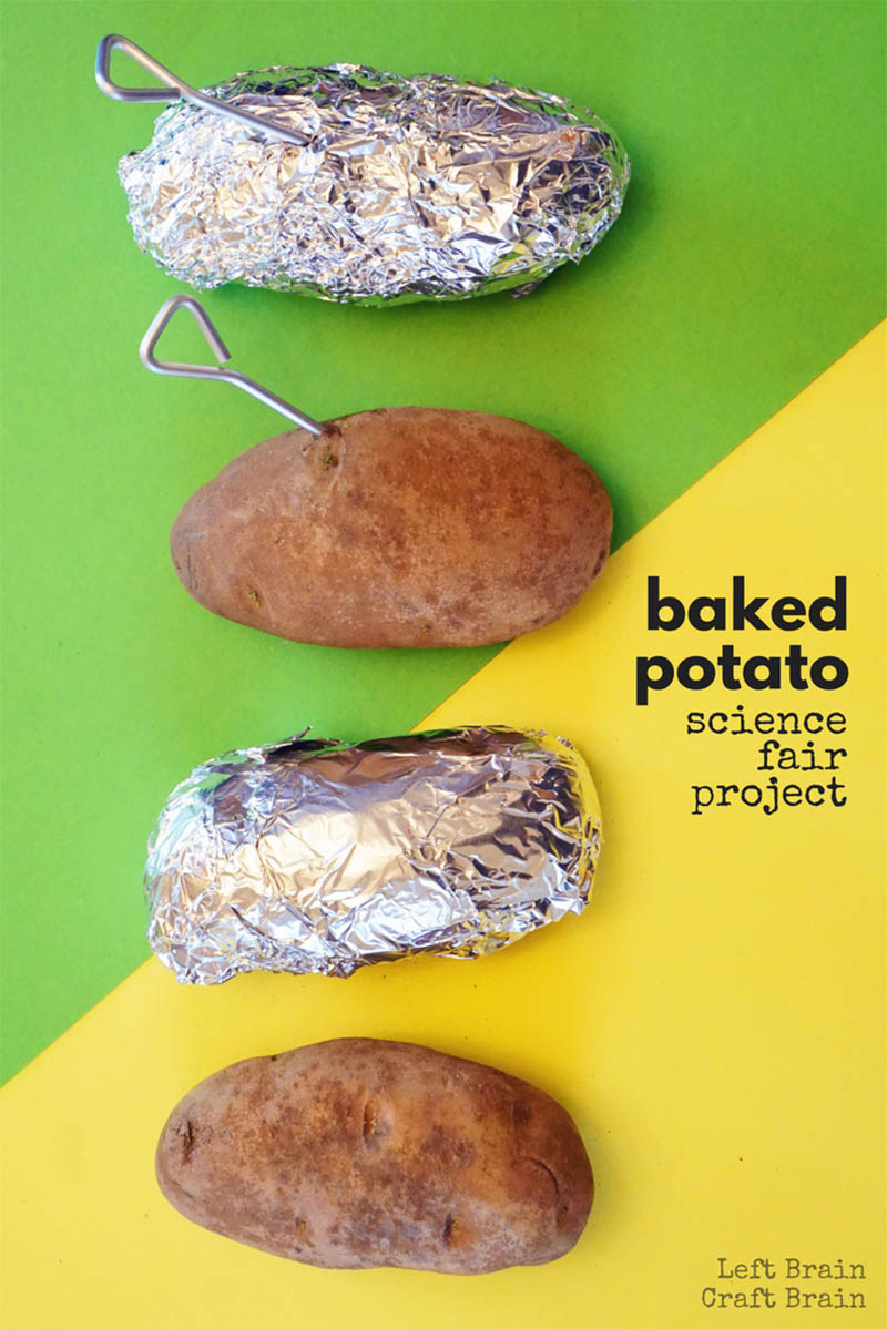 This baked potato science fair project is a delicious STEM activity for kids and a great way to learn about the scientific method.