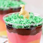 Layers of the Earth Pudding Cups
