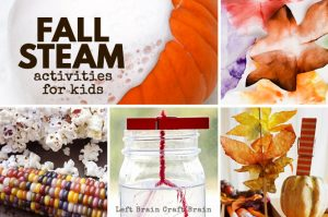 Hands-on Fall STEAM Activities for Kids