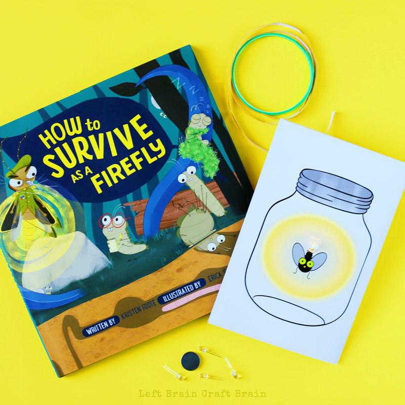 How to Survive as a FIrefly book along with the paper circuit.