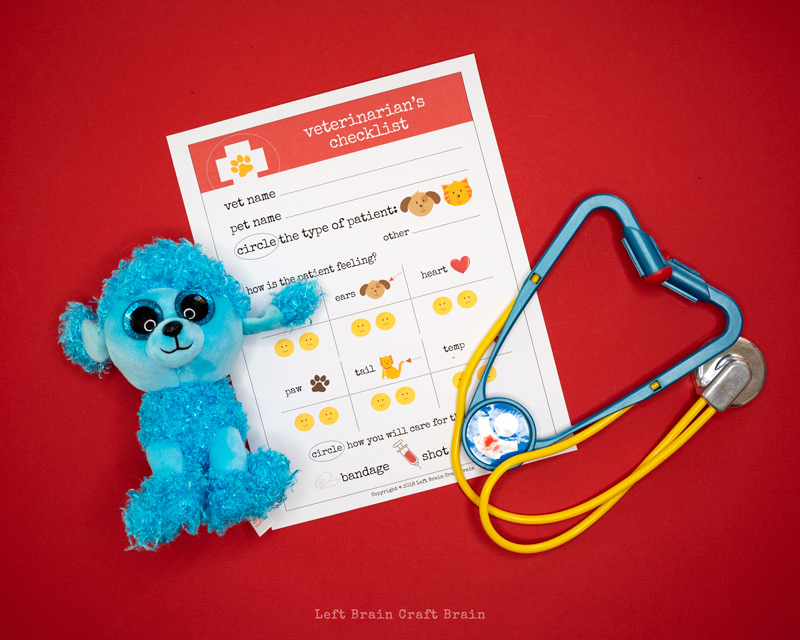 veterinarian checklist for pretend play