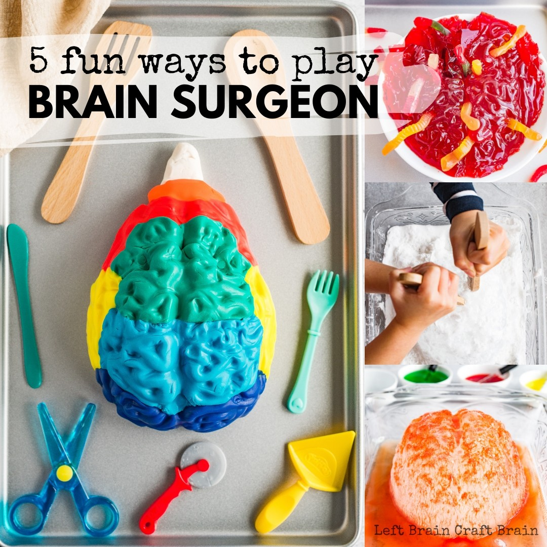 Play Brain Surgeon with a brain jello mold! Five messy and spooky ways to learn about the parts of the brain. Slime, Ice, erupting brains... Perfect for Halloween or Mad Scientist parties!