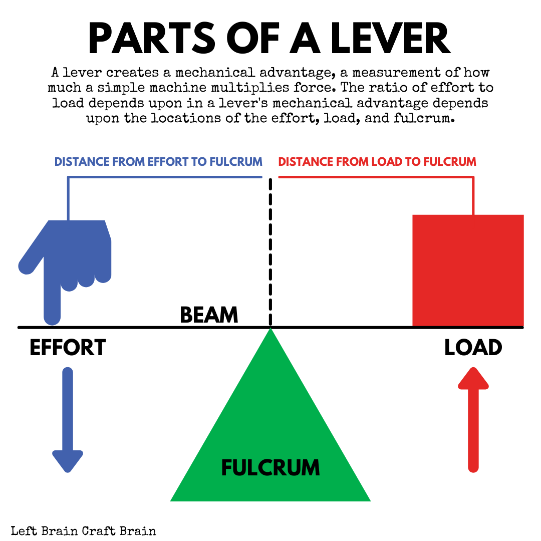 A lever creates a mechanical advantage, a measurement of how much a simple machine multiplies force. The ratio of effort to load depends upon in a lever's mechanical advantage depends upon the locations of the effort, load, and fulcrum.