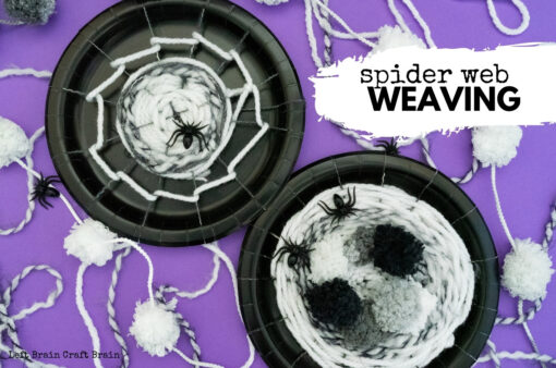 Spider Web Weaving 680x450