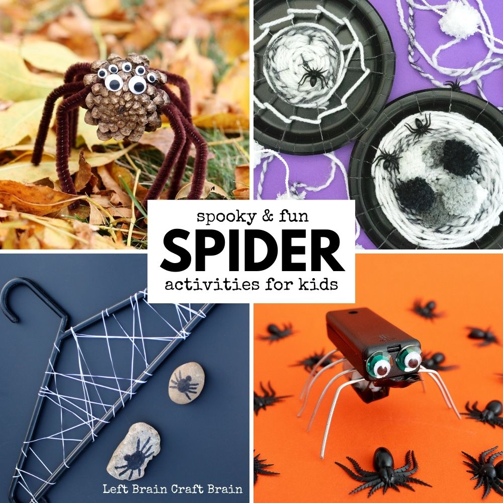 Looking for something to do today? Check out these spider activities filled with science, art, crafts, and more! They're perfect for October and Halloween.