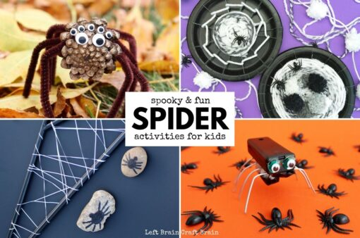 Spider Activities for Kids 680x450
