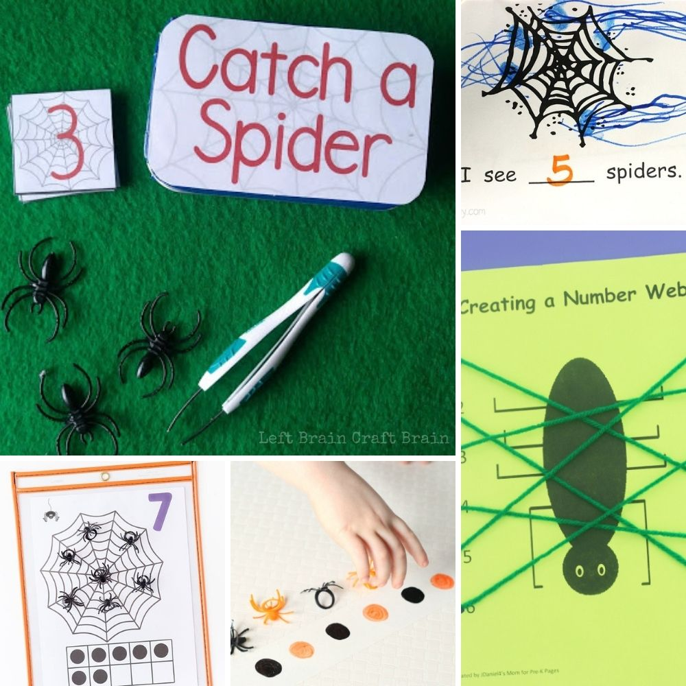 math spider activities with counting activities, spider patterns, spider yarn number web
