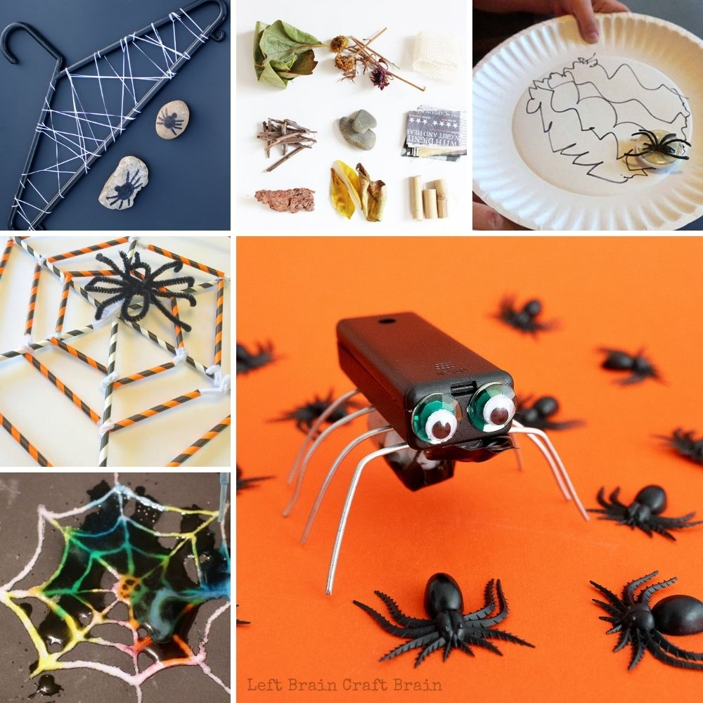 spider science and engineering project collage with spider bot, spider web wrapped on hanger, natural materials, straw spider web