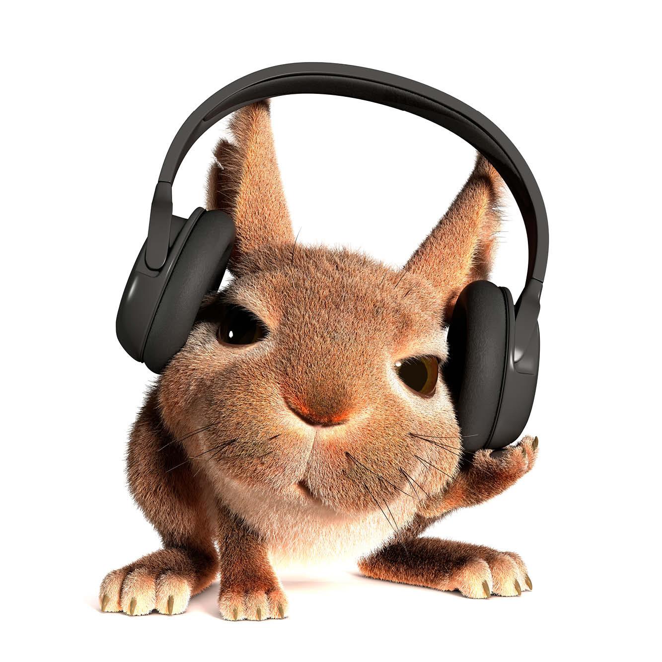 Rabbit in headphones v2