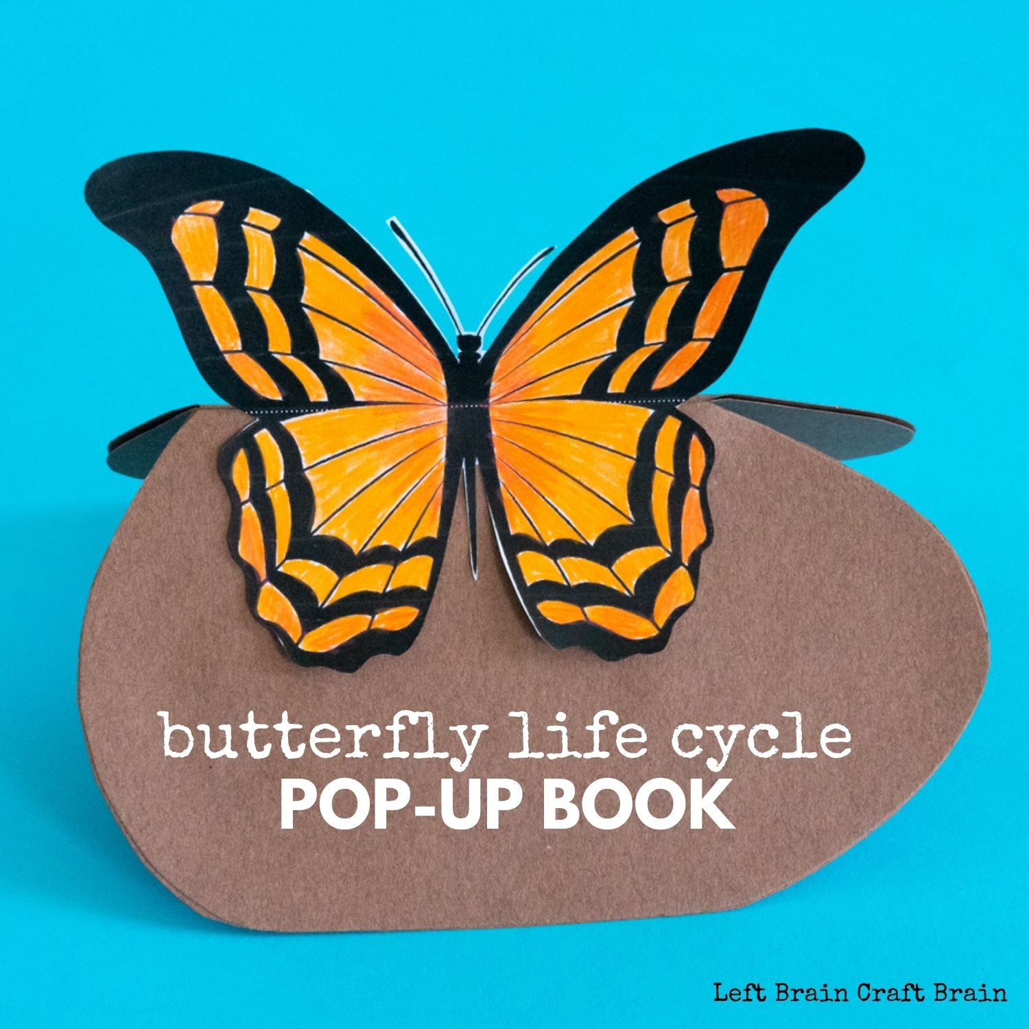 Learn about the butterfly life cycle with a fun pop-up book! It's a perfect STEAM activity for school or homeschool.