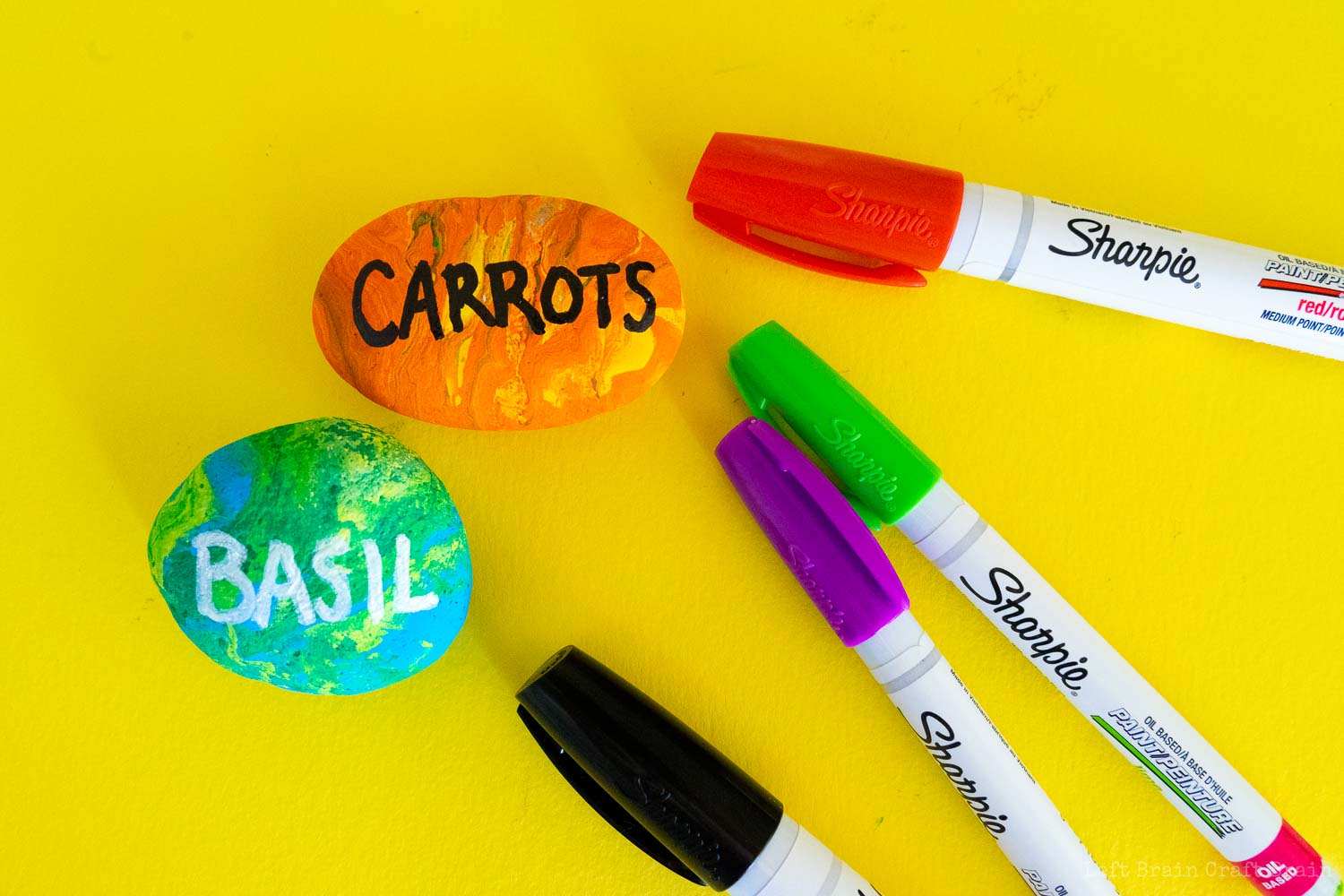 carrots and basil rocks with sharpie paint markers